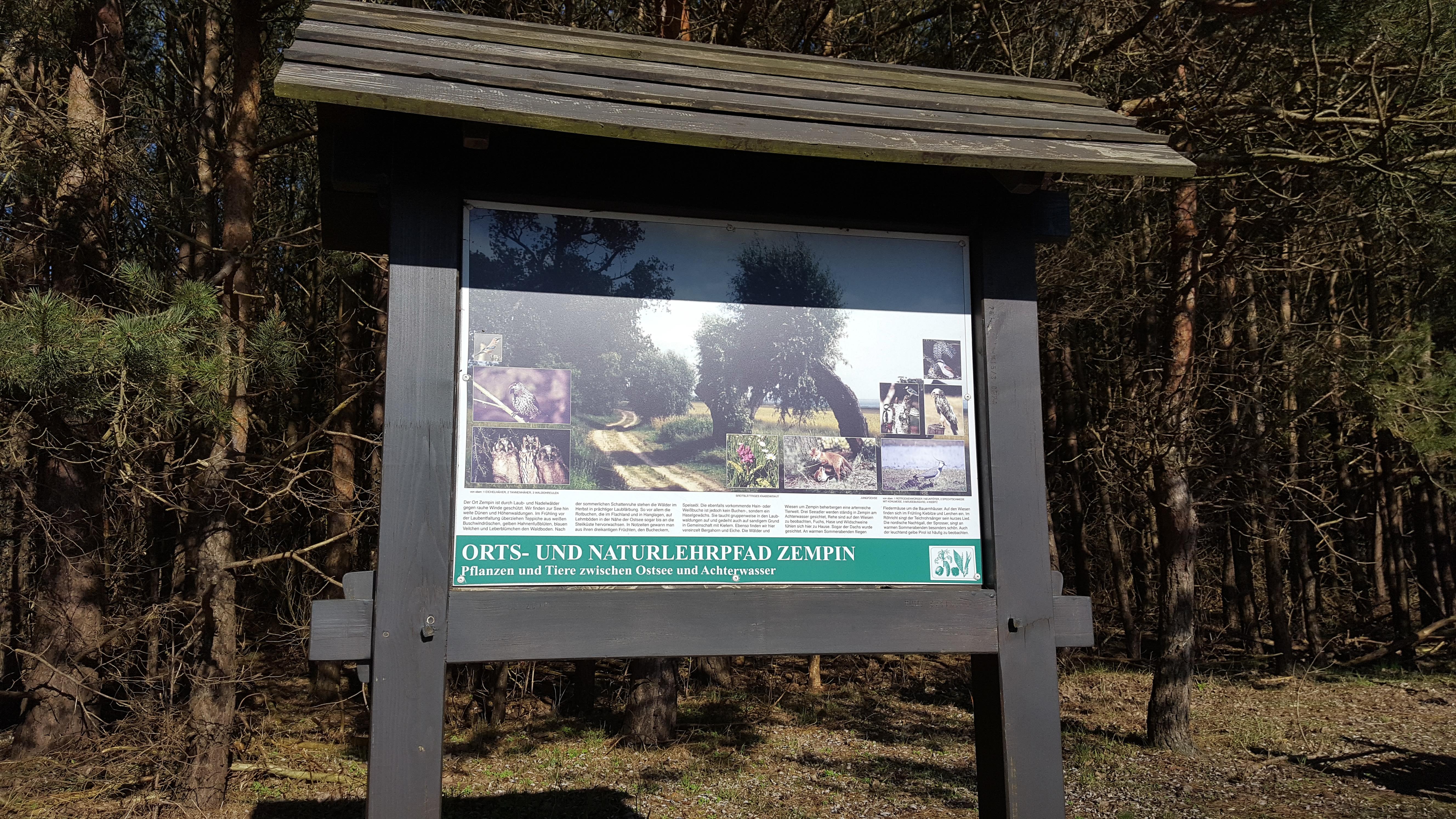 Naturlehrpfad - Markierung Wanderwege Zempin Insel Usdeom Ausflusgziel