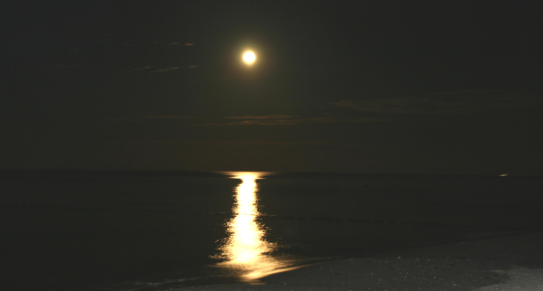 XXL-Strandfeuerwerk - Zempiner Strand bei Nacht